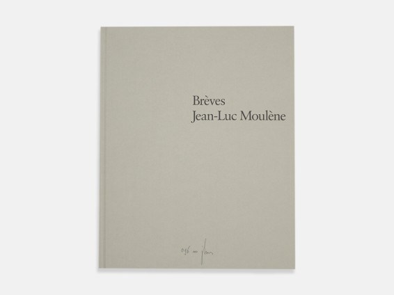 Jean-Luc Moulène: Brèves