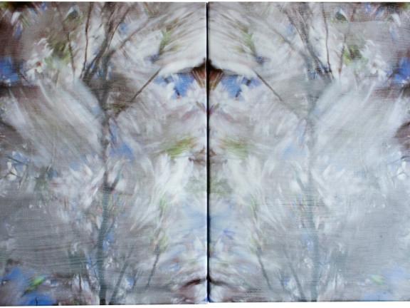 Blossom - blurred, 2010