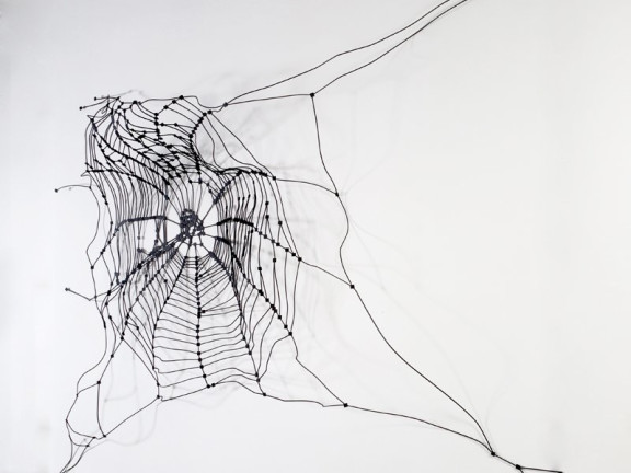 Transformable Spider Web, 2008-2011