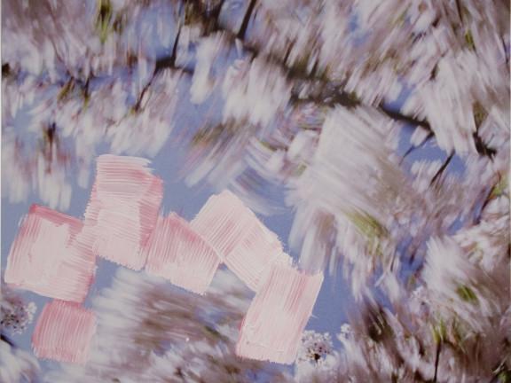 Blossom - brushes, 2009