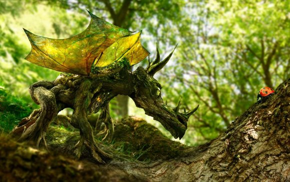 The Wood Dragon and the Ladybird