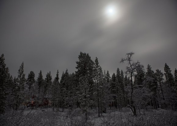 Lapland Winter Moonlight