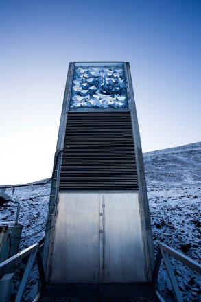 The Doomsday Vault