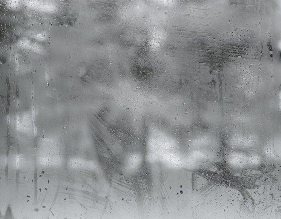 Untitled 1, 2010
