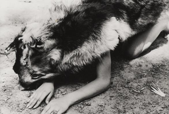 Ana Mendieta, Dog, 1974
