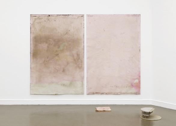 Ian Kiaer, Endnote, tooth (panoramico, pink), 2017