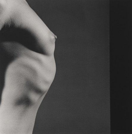 Robert Mapplethorpe, Tit Profile, 1980