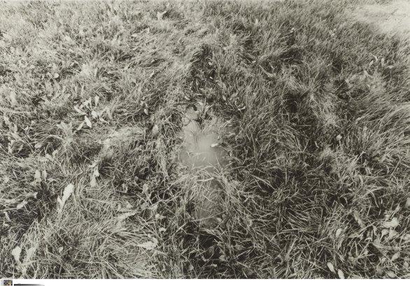 Untitled (Silueta Series), circa 1978