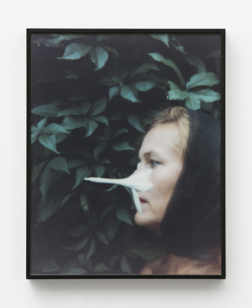 Birgit Jürgenssen, Untitled, 1995