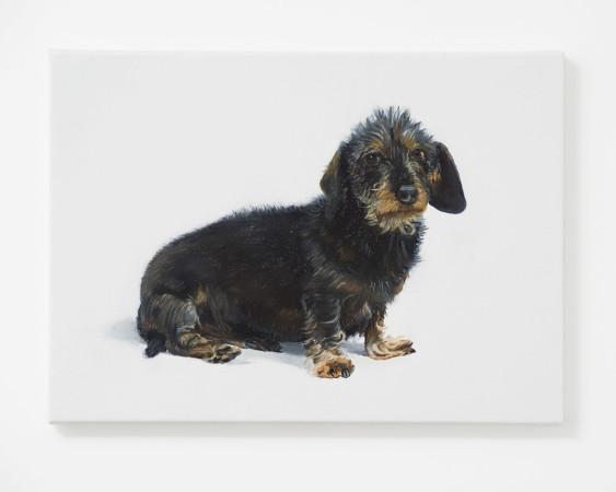 Alessandro Raho, Cleo Barbour's Dog, 2017