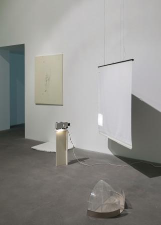 Ian Kiaer, Black tulip, glasshouse, 2012
