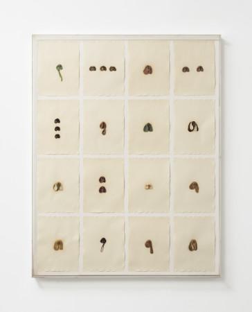 Hannah Wilke, S.O.S. Starification Object Series #4 (Mastication Box), 1975