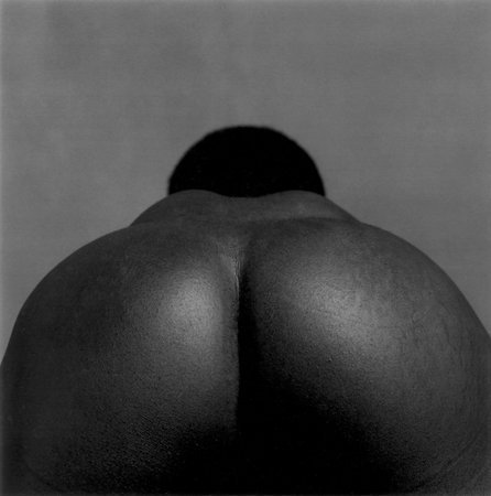 Robert Mapplethorpe, Ajitto, 1981