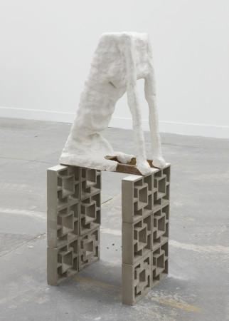 Erika Verzutti, Neo Rex, 2008
