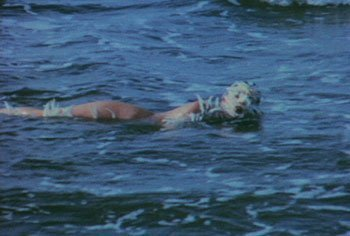 Ocean Bird (Washup), 1974