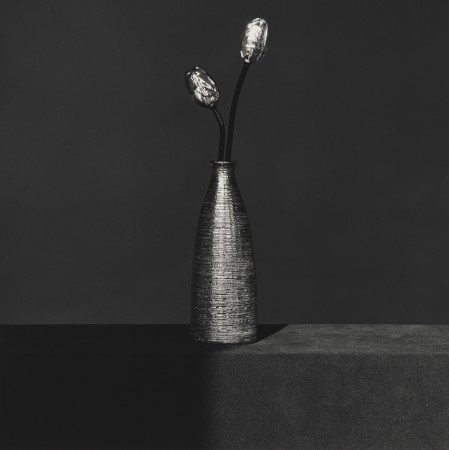 Robert Mapplethorpe, Metal Flower, 1982
