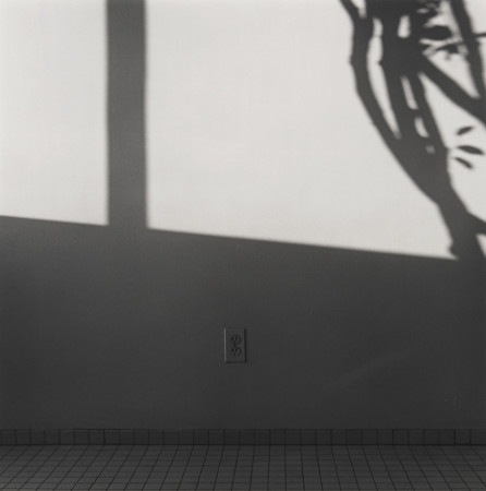 Robert Mapplethorpe, Shadows, 1982
