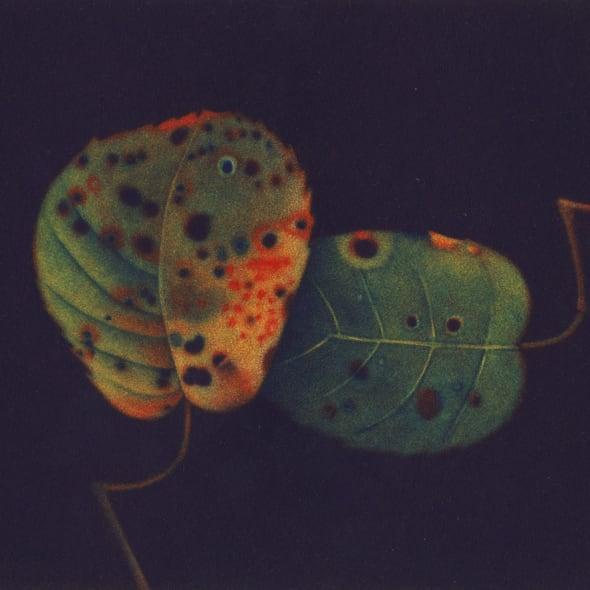 James McCreary ARE - Autumn Leaves II