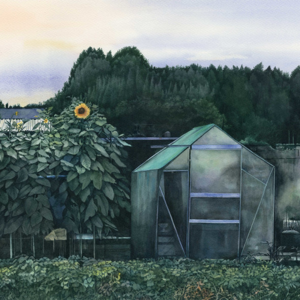 Liz Butler RWS - Dusk at the Allotments