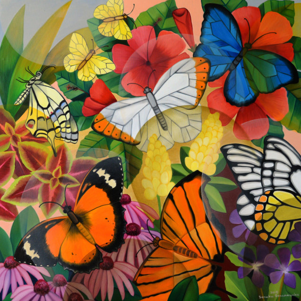 Senaka Senanayake - Butterflies