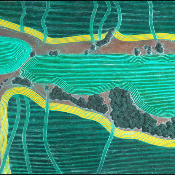 Diana Moore, Green Fields with Gold Bands