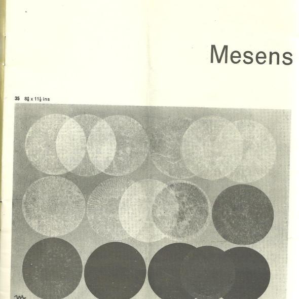 Mesens