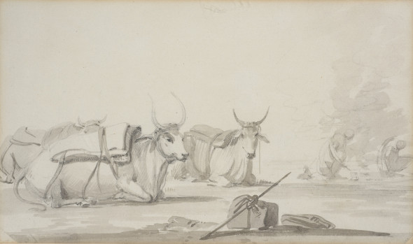2. William Daniell R.A., Bullocks, Circa 1780-90