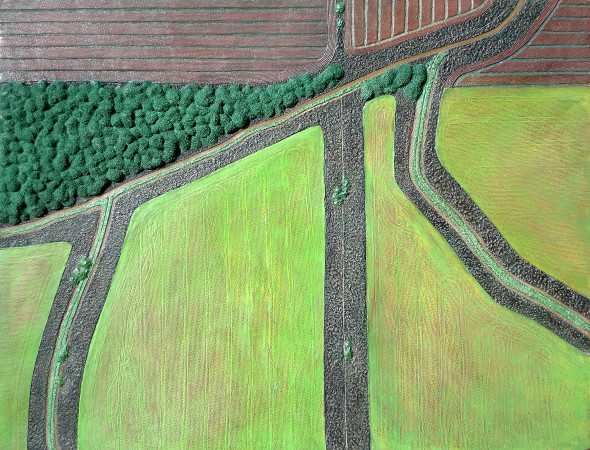 Diana Moore, Field Geometry 2