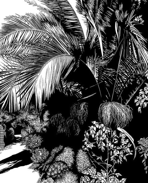 Palm Walk
