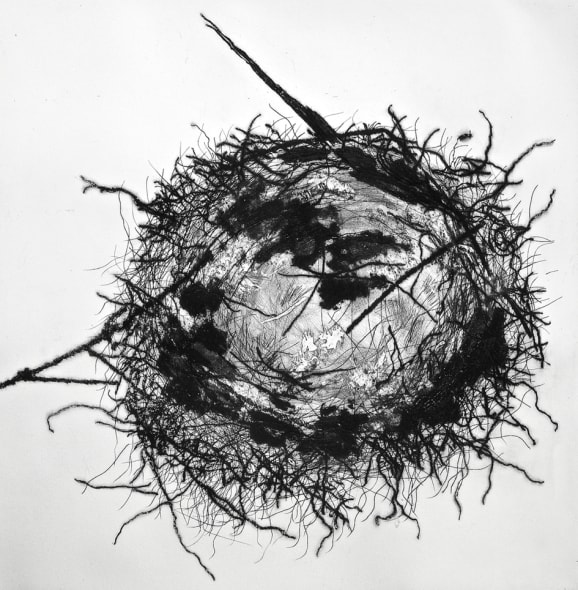 Feathered Nest 2
