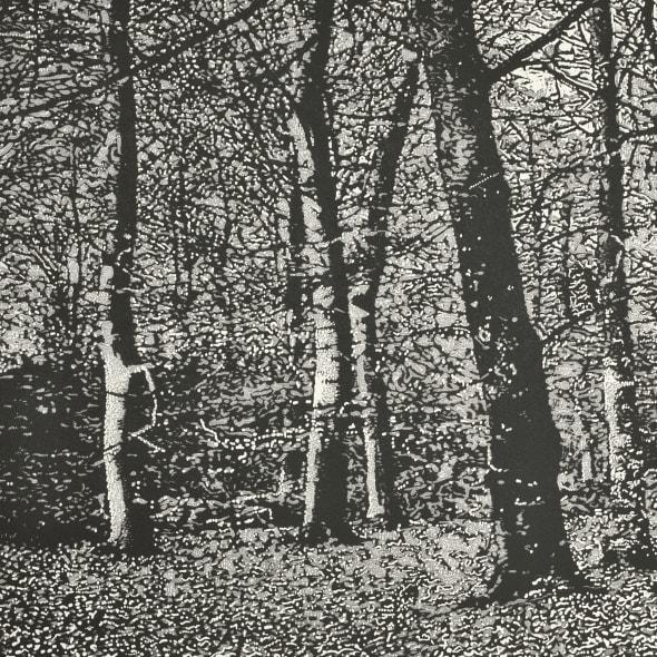 Woodland I
