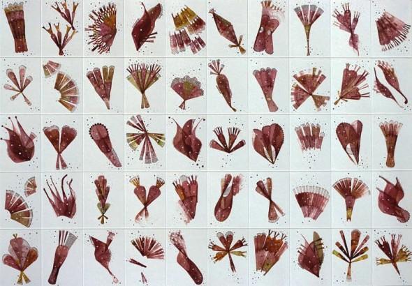 Florilegium no.2