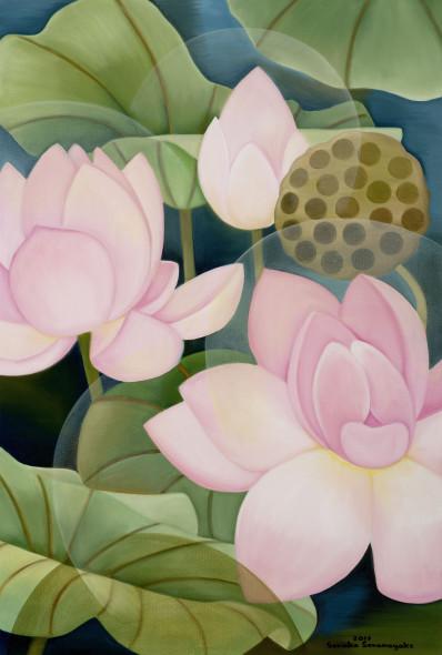 Senaka Senanayake, Pink Lotus,, 2017