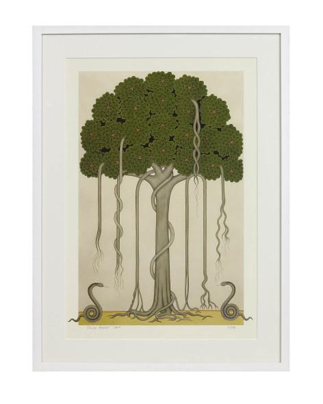 Olivia Fraser, Banyan Tree, 2010