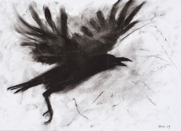 Jim Moir, Crow II, 2017