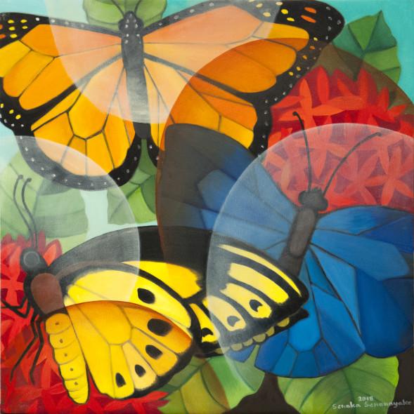 Senaka Senanayake, Butterflies, 2018