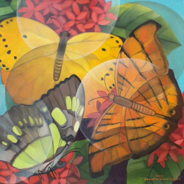 Senaka Senanayake b. 1951Butterflies, 2018 Oil on canvas 61 x 61 cm 24 x 24 in