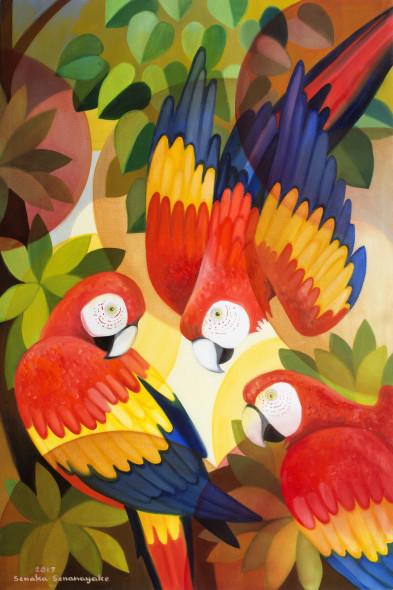 Senaka Senanayake, Scarlet Macaws, 2017