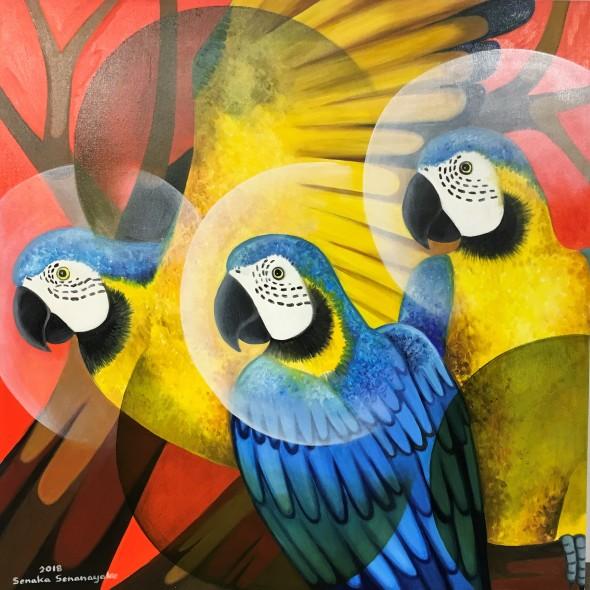 Senaka Senanayake Macaws, 2018 Oil on canvas 91.4 x 91.4 cm 36 x 36 in