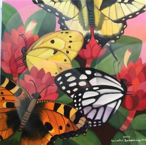 Butterflies, 2015