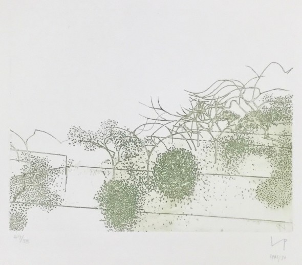 <span class=%22title%22>Metamorphosis (Linear Motif), A (Gardens of Hammersmith I)<span class=%22title_comma%22>, </span></span><span class=%22year%22>1945/76</span>