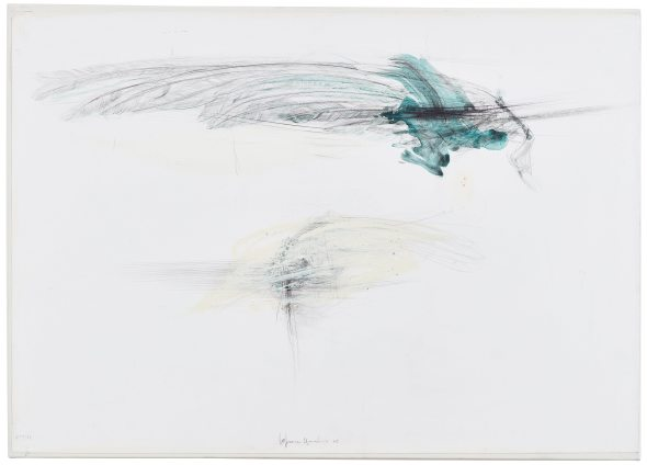 Lanfranco Quadrio, Bird wings, 2016