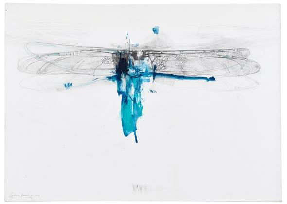 Lanfranco Quadrio, Dragonfly wing, 2016