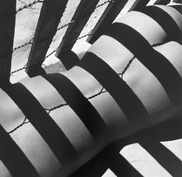 Sand Fence, 1930s