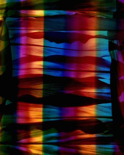 Seize The Rainbow, 2016