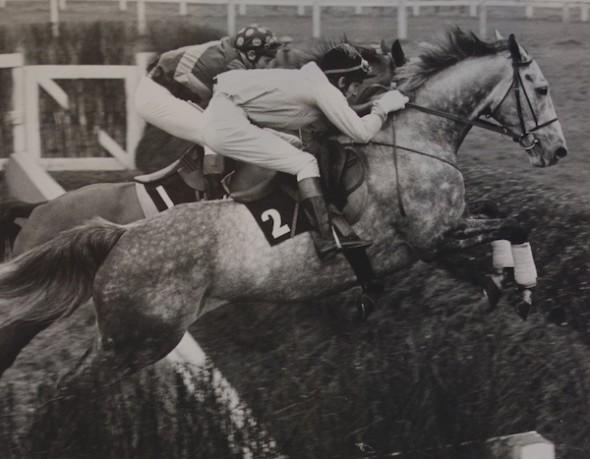 Jockey Richard Dennard, Kempton Park, England