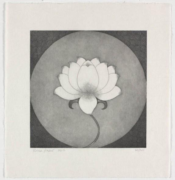 Olivia Fraser, Lotus, 2012