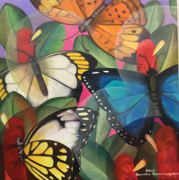 Senaka Senanayake, Butterflies, 2015