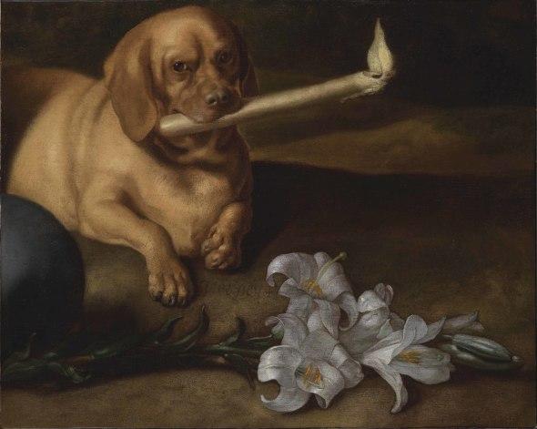 "<span class=""artist""><strong>Juan de Pareja</strong></span>, <span class=""title""><em>Dog with Candle and Lillies</em>, ca. 1660s</span>"