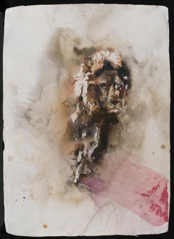 Paul Richards, Lion, at 6am, 2014